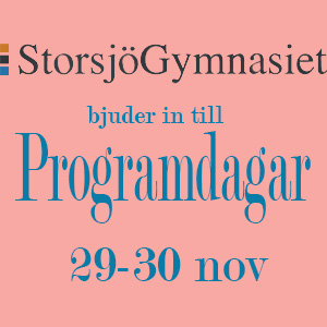 You are currently viewing Programdagar 29-30 nov