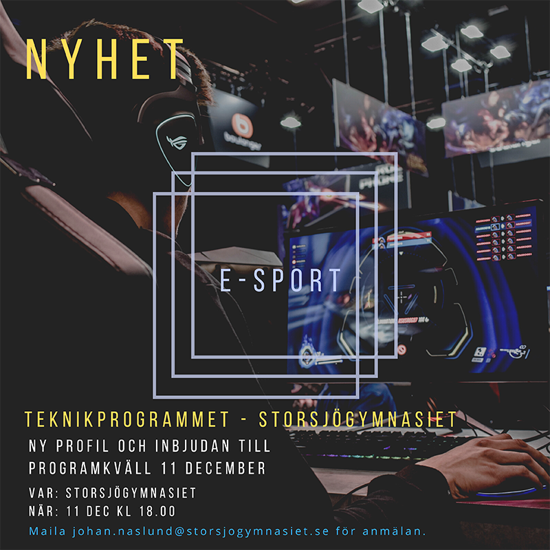 You are currently viewing E-sportkväll