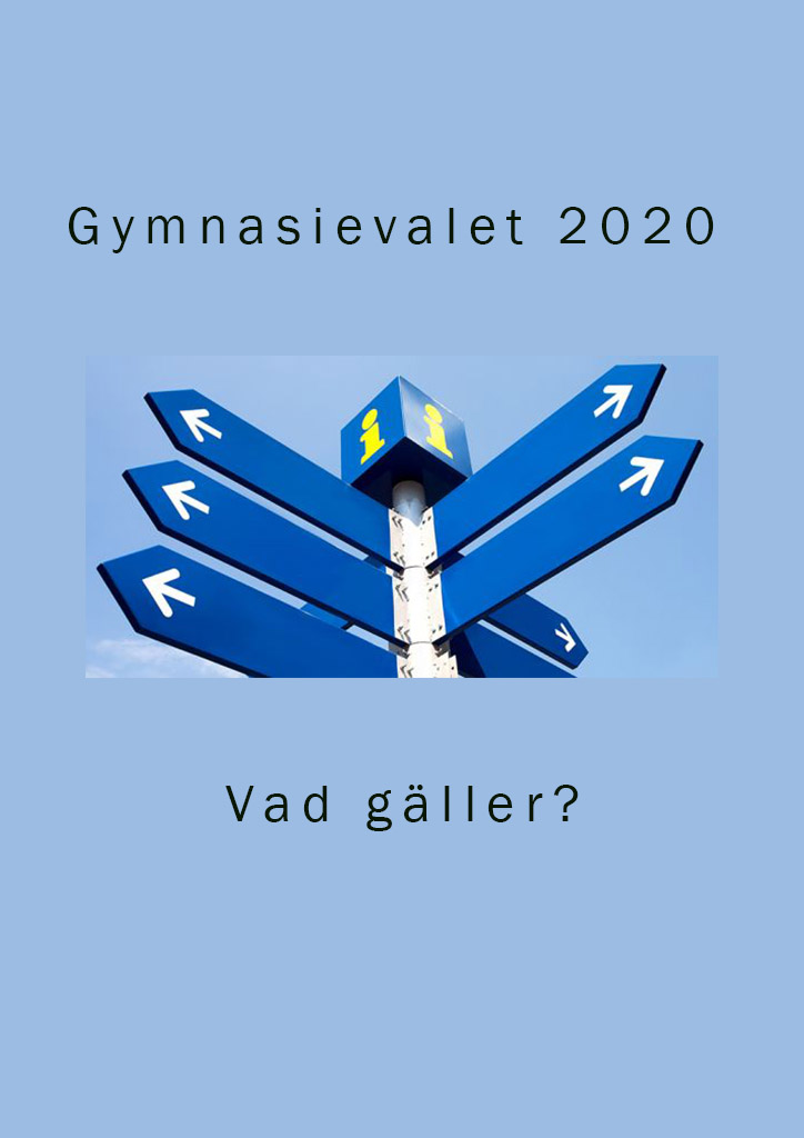 You are currently viewing Gymnasievalet 2020